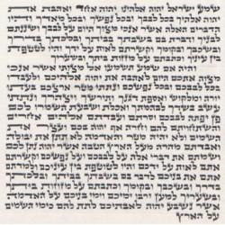PARCHEMIN MEZOUZA 10 Cm