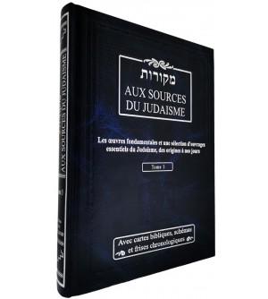 Aux sources du Judaïsme T3