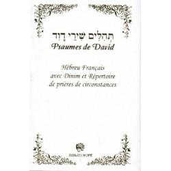 Psaumes de David - Hébreu Français blanc