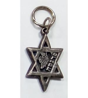 Porte clés étoile de David - Parnassa