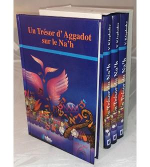 Un Trésor d'Aggadot sur le Nah - Coffret 4 volumes