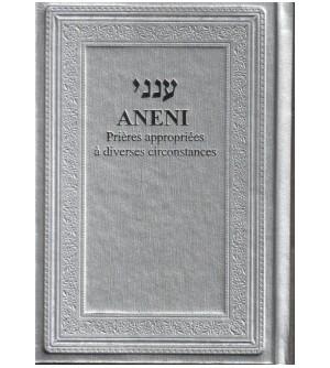 ANENI Argent